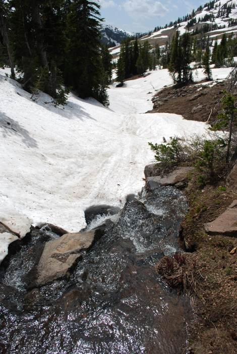 Looking down from the spring in June 2012.  Undoubtedly, April will have a LOT more snow. -by Rod Wellington