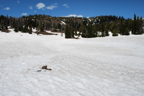 Continental Divide at Brower's Spring in June 2012-by Rod Wellington