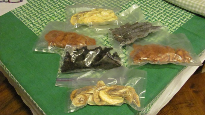 Samplings of my first round of drying foods.