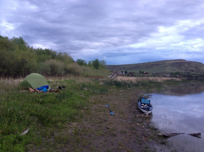 That night I tried to paddle to the Corp of Discovery Canoe Camp. Turns out it was covered with homes. That is okay, I found a spot at dark and slept on a bed of mint. Soggy but no Mosquitos, and rather fragrant.