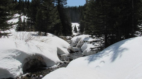 Hell Roaring Creek