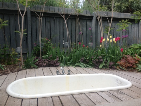 I love this. John and Keely's hot tub in the back yard. How cool is that?