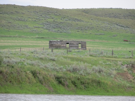 I barely got my camera out in time to snap this photo. This looks like an old homestead cabin. My imagination soars when I see structures like this. What must it have been like over a century ago settling in the wild west?