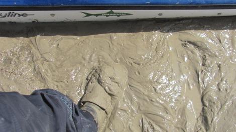 Creamy mud